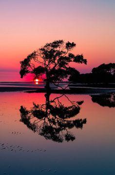 Here are my top 5 best takeaways from  Australia! My #1 takeaway is.....
