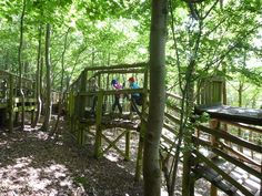 groombridge place enchanted forest - Google Search