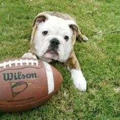 She loves her football