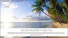 Flowers of Life: Islamic Wallpaper 8 - Qur'an Surah Al-An'am (6) : ...