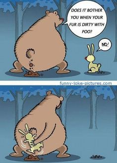 Very Funny Bear Rabbit Fur Poo Joke Cartoon