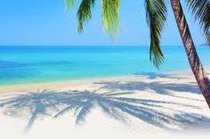 Risultati immagini per spiagge tropicali