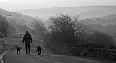 A man and his dogs, Yorkshire, England, Richard Donkin