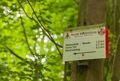 Harzer Baudensteig im Harz in Niedersachsen. Toller Wanderweg und hier mein Bericht: http://www.outdoor-wandern.de/k2/erlebnis/item/1141-detail