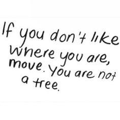 #tree #quote #change