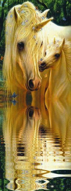 ♘Unicorn•Pegasus•GiF♘