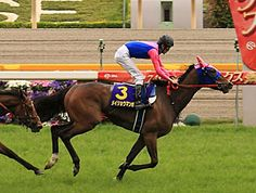 Meisho Mamboc wins Japanese Oaks