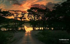 Anybody up for a drive to the Frio River, Texas ~ Kimi Lukacheck Philly