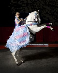dancing horse trainer heidi herriott to perform at kentucky horse park, lexington, kentucky Kentucky Horse Park, Horse And Human, Horse Costumes, Horse Pictures, Style And Grace, Dressage, Trainers, Grey Horses, Ballet Skirt