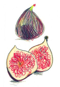 sarah maycock.  Try fruit/veggie images in colored pencil and on iPads