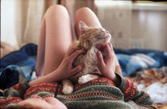 Another favorite, Purring kitties and cozy sweaters <3