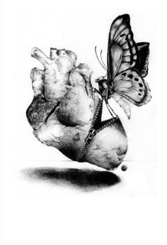 Surgery by Kenn Olsen Tattoo Anatomical Heart Butterfly Tattoo Giclee Art Print