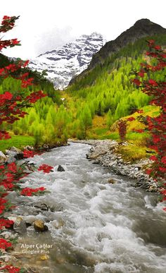 Amos (KJV) ~ But let judgment run down as waters, and righteousness as a mighty stream. Beautiful Nature Pictures, Beautiful Nature Wallpaper, Beautiful Gif, Amazing Nature, Nature Photos, Beautiful Landscapes, Beautiful World, Nature Gif, Nature Scenes