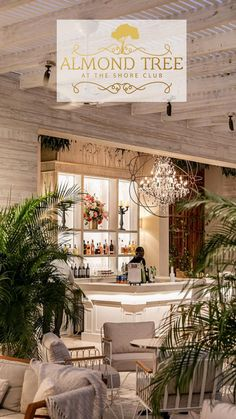 Creative Comfort Food with a Shore Club Twist Luxury Hotels, Luxury Travel, Hotels And Resorts, Travel Images, Travel Pictures, Air Seat, Tree Restaurant, Caribbean Vacations, Nautical Design