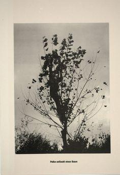 . . . Höhere Wesen befehlen | Sigmar Polke, . . . Höhere Wesen befehlen (1968)
