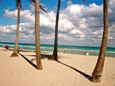 Fort Lauderdale: Fort Lauderdale   >> See the deals!