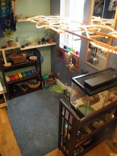 Annie's Alphabet Home Childcare: Science area.as promised Classroom Pets, Montessori Classroom, Classroom Environment, Classroom Design, Classroom Decor, Classroom Ceiling, Classroom Displays, Science Area, Science Room
