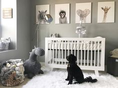 babyletto on Instagram: ... so. many. plushies. #waitingonbaby  beautiful neutral nursery!  • #babyletto Hudson crib • : designed by mama-to-be Courtney Fogarty featuring furbabe Cash