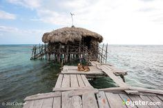 At Floyd's Pelican Bar, a shack in the middle of the Caribbean off the coast of Jamaica, you get served by Floyd and meet his dog, too.