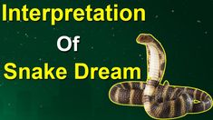 Dreams about snakes are very interesting.Today's in this article, We are going to learn, Islamic dream interpretation about snakes. Dream Interpretation Snakes, Islamic Dream Interpretation, Dream Meaning Snake, What Is Meant, Meant To Be, Types Of Science, Dream Meanings, Cobra Snake, Dreaming Of You
