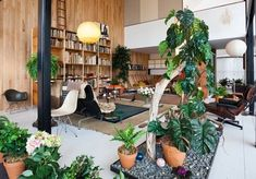 This is actually my idea of a pitch perfect living room.  Complete with tons of plants, vaulted ceiling and of course tons of Eames furniture.
