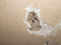 Patching plaster walls is not too difficult depending upon the size of the holes being patched. The materials used to patch plaster are special. Drywall joint compound is not an acceptable patching material. Patching Plaster Walls, Plaster Repair, Diy Plaster, Patching Drywall, Diy Projects Garage, Craftsman Remodel, How To Patch Drywall, Drywall Ceiling, Sewing Crafts