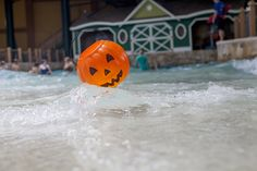 Dive in for fangtastic fun at Great Wolf Lodge Indoor Waterpark Resort. | 31 Days of Howl-O-Ween