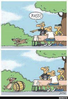 Bester Hund der Welt!?