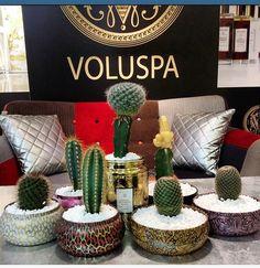 Reuse Voluspa candle tins