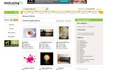 ROYALTY FREE IMAGES for Wordpress Blogs