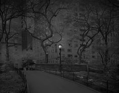 Fotografía nocturna de Central Park por Michael Massaia