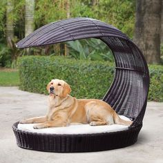 Protect and care for your pets with pet care products offered by Hammacher Schlemmer. Explore our range of pet beds, pet furniture covers, and more. Dog Gadgets, Dog Playground, Outdoor Dog Bed, Dog Tags Military, Pet Life, Pet Beds, Large Dogs, Dog Grooming, Pets