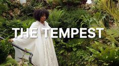Shakespeare in Detroit: The Tempest at Belle Isle Conservatory