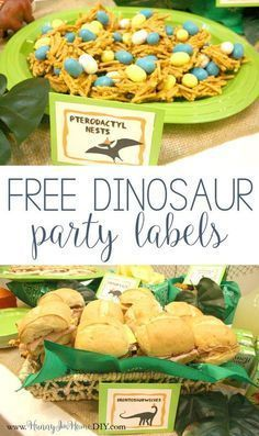 Get inspiration from my dinosaur birthday party and download some free printable food labels!