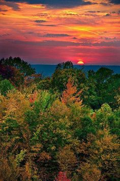 Great autumn colors and awesome sunset.Great autumn colors and awesome sunset.Sunset Great autumn colors and awesome sunset.Great autumn colors and awesome sunset. Beautiful World, Beautiful Places, Beautiful Scenery, Beautiful Beautiful, Beautiful Sunrise, Sunset Photos, Amazing Nature, Pretty Pictures, Beautiful Landscapes