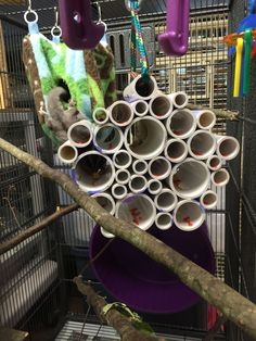 PVC pipe cluster filled with applesauce and treats for sugar gliders #parrotcagediy