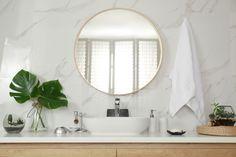 6 plante ce supraviețuiesc cu succes în baie | DesignTherapy Vessel Sink, Round Mirrors, Aesthetic Art, Bathroom Interior, Stock Photos, Stylish, Adobe, Explore, Furniture