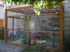 The catio (a patio for a cat, of course) is the feline equivalent of our screened-in porch.  http://www.sheknows.com/pets-and-animals/slideshow/2677/10-amazing-catios-that-ll-make-your-cat-love-you-forever/outdoor-living-cat-style