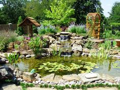 Sublime Water Gardens Koi Pond Construction