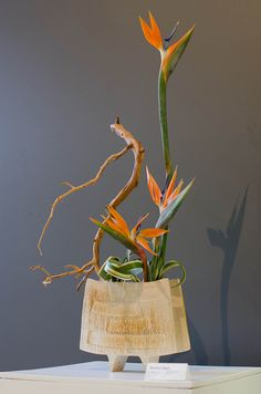 Ikebana - Marlène Pouly by FoToZaTooS, via Flickr