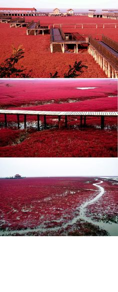 red beach Red Beach, Places, Beautiful, Lugares
