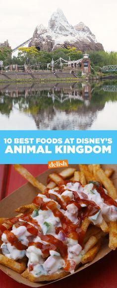 The 15 Most Delish Foods At Disney's Animal Kingdom