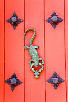 Reptilia. - TownandCountryMag.com