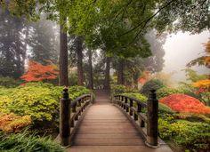 prachtige tuinposter, mooi diepte effect in je tuin
