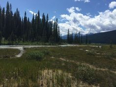 On the Fenland Trail, Banff National Park, Canada