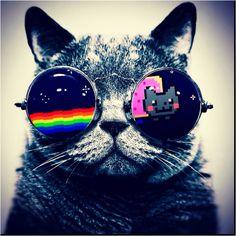 1000 images about nyan cat on pinterest nyan cat nyan