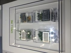 Aromatic leaves in the California flora - interactive exhibit (LA NHM)