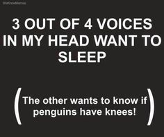 3 out of 4 voices in my head want to sleep...