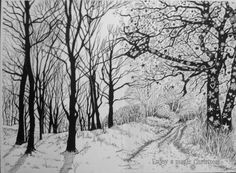 Magical Trees Pen and ink Glyn Overton
