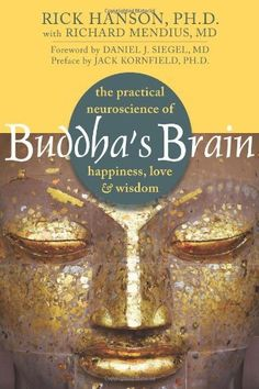 Buddha's Brain: The Practical Neuroscience of Happiness, Love, and Wisdom, http://www.amazon.com/dp/1572246952/ref=cm_sw_r_pi_awdm_qPBetb1X88JXC